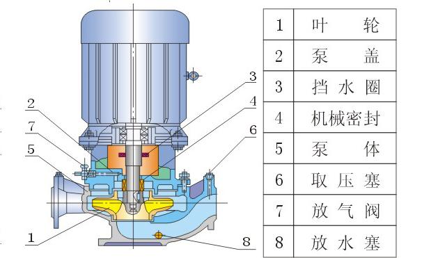 立式管道泵结构图
