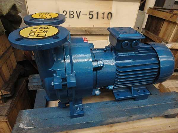 2BV5110水环式真空泵