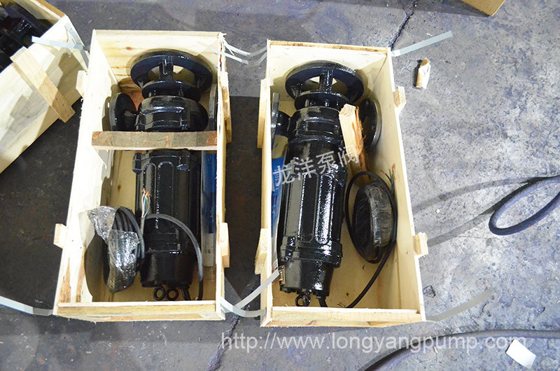龙洋泵阀WQ潜水排污泵产品包装图